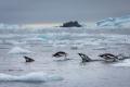 Antarctica-Landscape-T.Branson-1-4