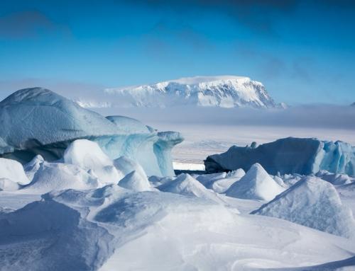 The Explorer's Guide to Antarctica