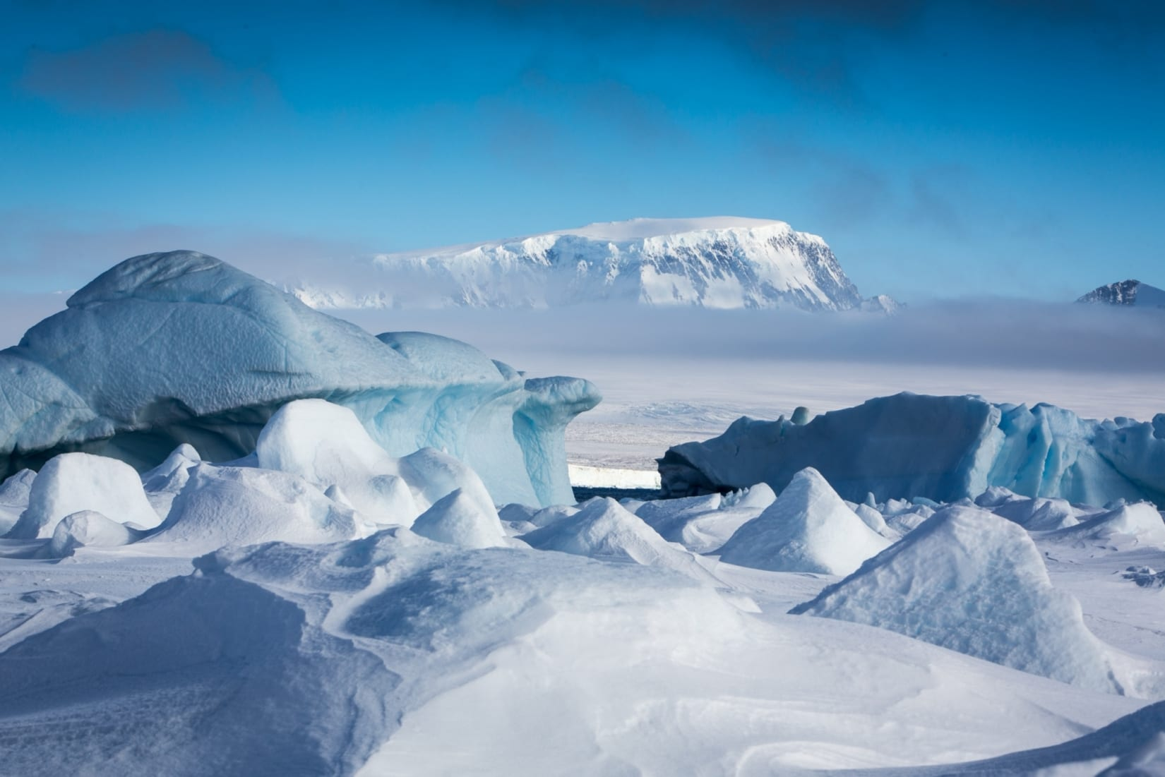 The Explorer's Guide to Antarctica